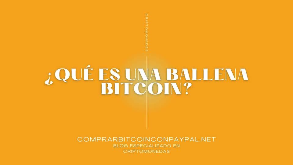 ¿Qué es una ballena bitcoin?